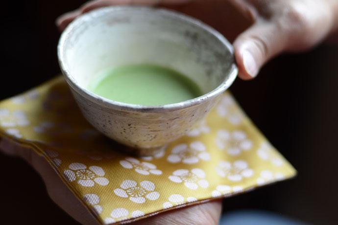 Kobukusa with Rikyu's Plum Blossom (紹紦利休こぼれ梅文様)Shoha RIkyu Koboreume Monyo